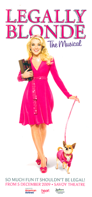 One of our Chihauhaus in Legally Blond